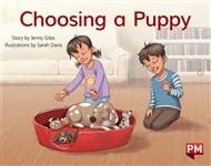 Choosing a Puppy - 9780170388887