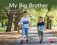 My Big Brother - 9780170388917