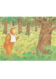 PM Educational Postcard Pack: Baby Bear - 9780170391382
