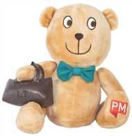 PM Educational Toy: Little Teddy - 9780170391405