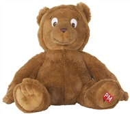 PM Educational Toy: Baby Bear - 9780170391429