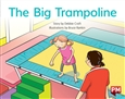 The Big Trampoline