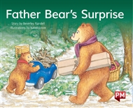Father Bear's Surprise - 9780170403412