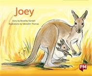 Joey - 9780170403467
