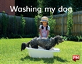 Washing my dog