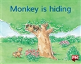 Monkey is hiding