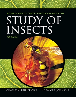 Borror and DeLong's Introduction to the Study of Insects - 9780357671276