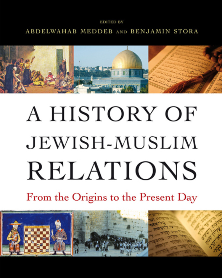 A History of Jewish Muslim Relations - 9781400849130