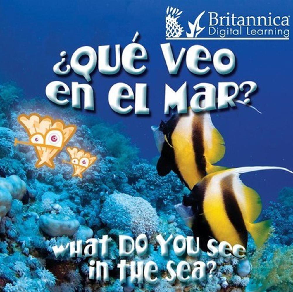 ¿Qué veo en el mar? (What Do You See, in the Sea?) - 9781615357574