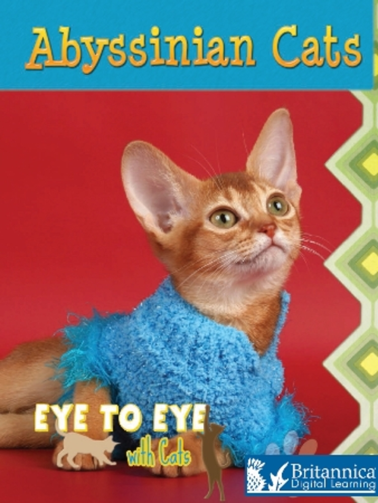 Abyssinian Cats - 9781615358564