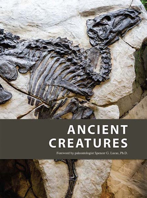 Ancient Creatures - 9781619256880