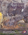 Rescuing Nelson