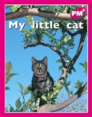 My little cat - 9780170095372