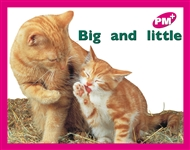 Big and little - 9780170095396