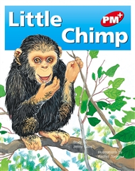 Little Chimp - 9780170095662