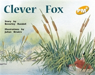 Clever Fox - 9780170096041