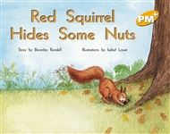 Red Squirrel Hides Some Nuts - 9780170096171