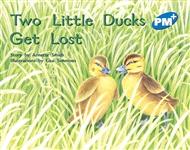 Two Little Ducks Get Lost - 9780170096584