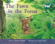 The Fawn in the Forest - 9780170097208