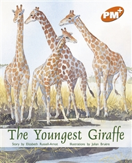 The Youngest Giraffe - 9780170097390