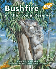 Bushfire in the Koala Reserve - 9780170098588
