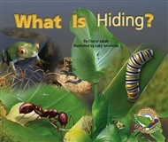 What Is Hiding? - 9780170112512