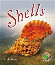 Shells - 9780170112987