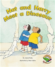 Nat and Harry Meet a Dinosaur - 9780170115797