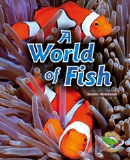 A World of Fish - 9780170120753