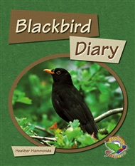 Black Bird Diary - 9780170120807