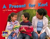 A Present for Karl - 9780170123310