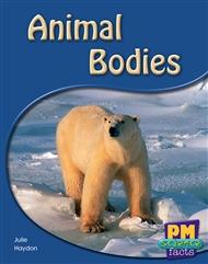 Animal Bodies - 9780170124010