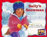 Sally's Snowman - 9780170124294