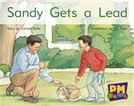 Sandy Gets a Lead - 9780170124416