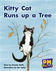 Kitty Cat Runs up a Tree - 9780170124423