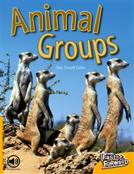 Animal Groups - 9780170124973