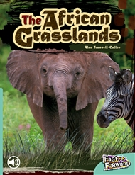 The African Grasslands - 9780170126304