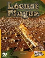 Locust Plague - 9780170126786