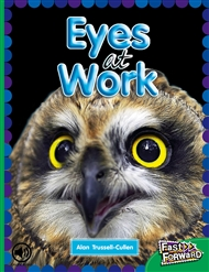 Eyes at Work - 9780170127257
