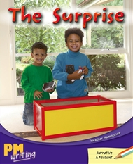 The Surprise - 9780170132435
