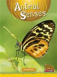 Animal Senses - 9780170179447