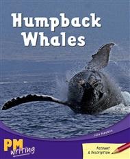 Humpback Whales - 9780170182478