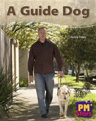 A Guide Dog - 9780170194334