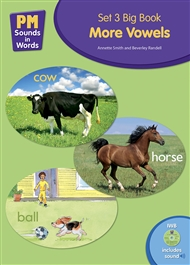 PM Sounds in Words Set 3 Big Book + IWB Software - More Vowels - 9780170218061