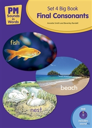 PM Sounds in Words Set 4 Big Book + IWB Software - Final Consonants - 9780170218078