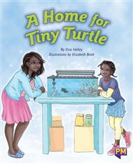 A Home for Tiny Turtle - 9780170266161
