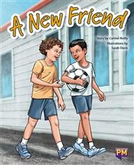 A New Friend - 9780170354264