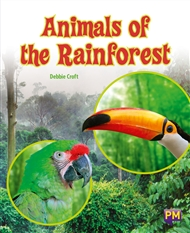 Animals of the Rainforest - 9780170354394