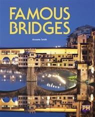Famous Bridges - 9780170368902