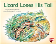 Lizard Loses His Tail - 9780170387248
